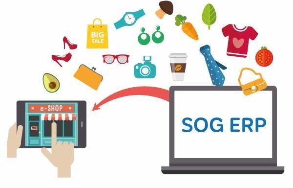 SOG-E-Shop-ERP-datentransfer
