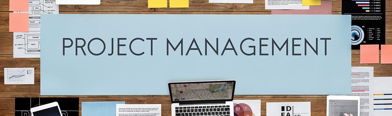 SOG-projekt-management