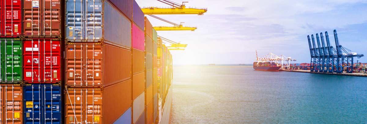 Warenwirtschaftssystem-für-Import-Großhandel